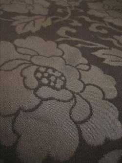 黒 帯 花